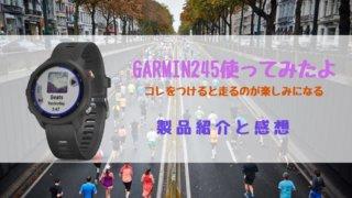 garmin245の紹介アイキャッチ