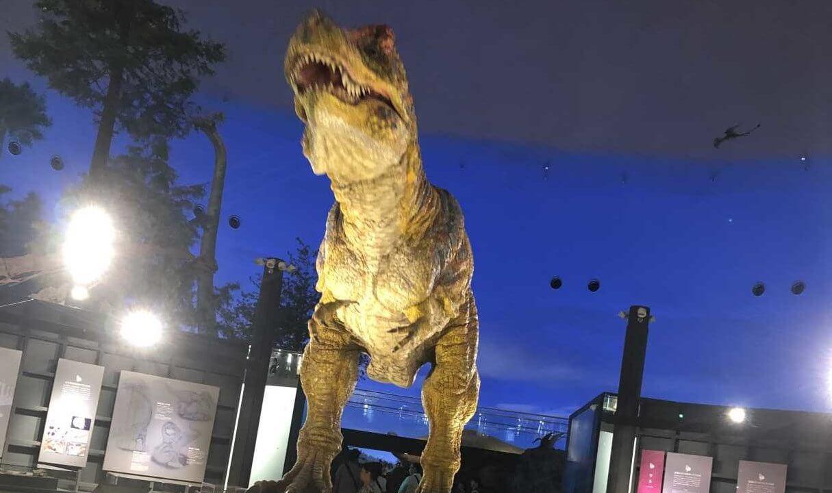 福井県立恐竜博物館のティラノサウルス正面から