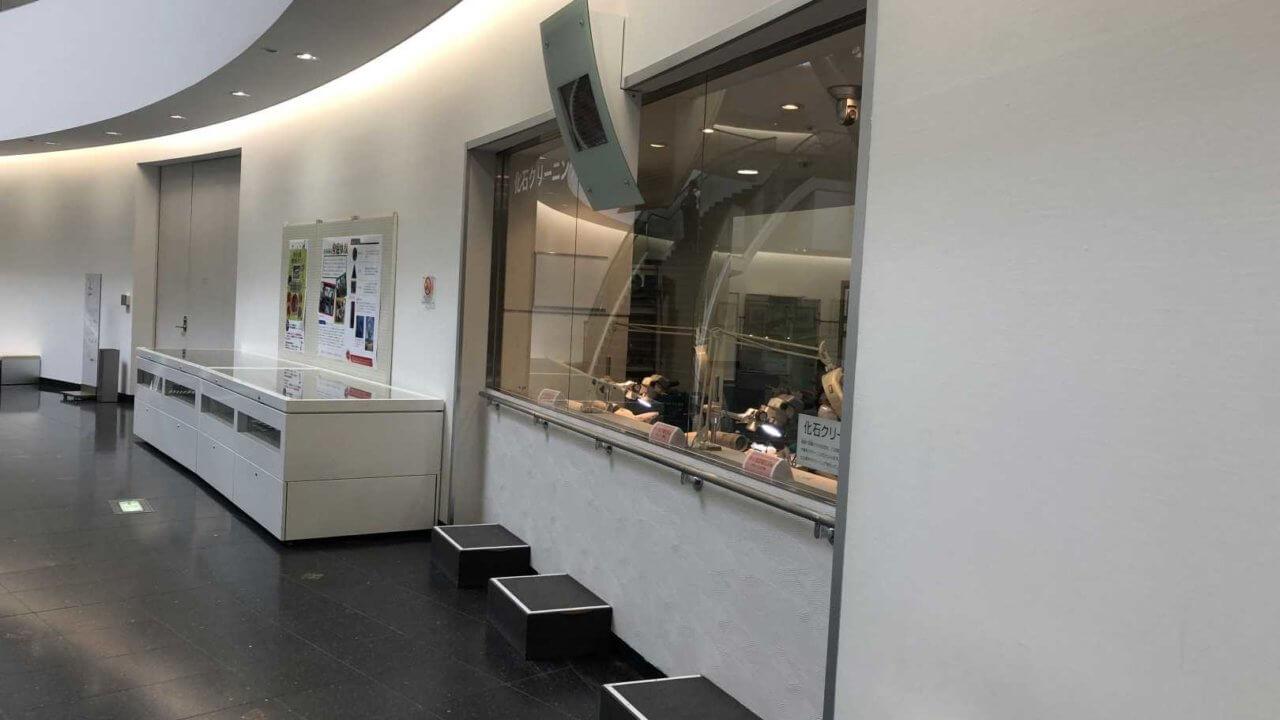 福井県立恐竜博物館の発掘研究室