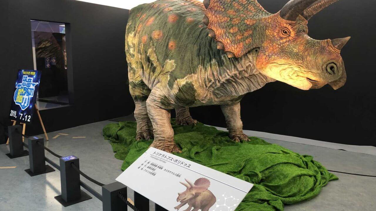 福井県立恐竜博物館トリケラトプス